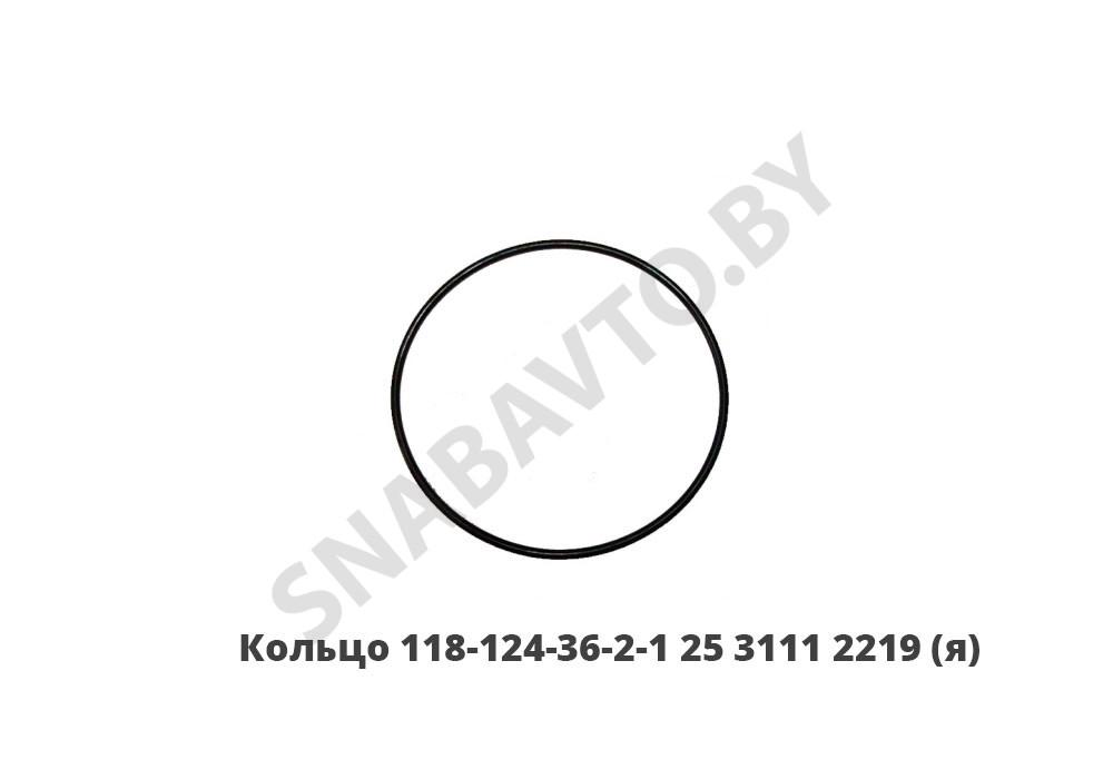 25 3111 2219 (118-124-36-2-1)