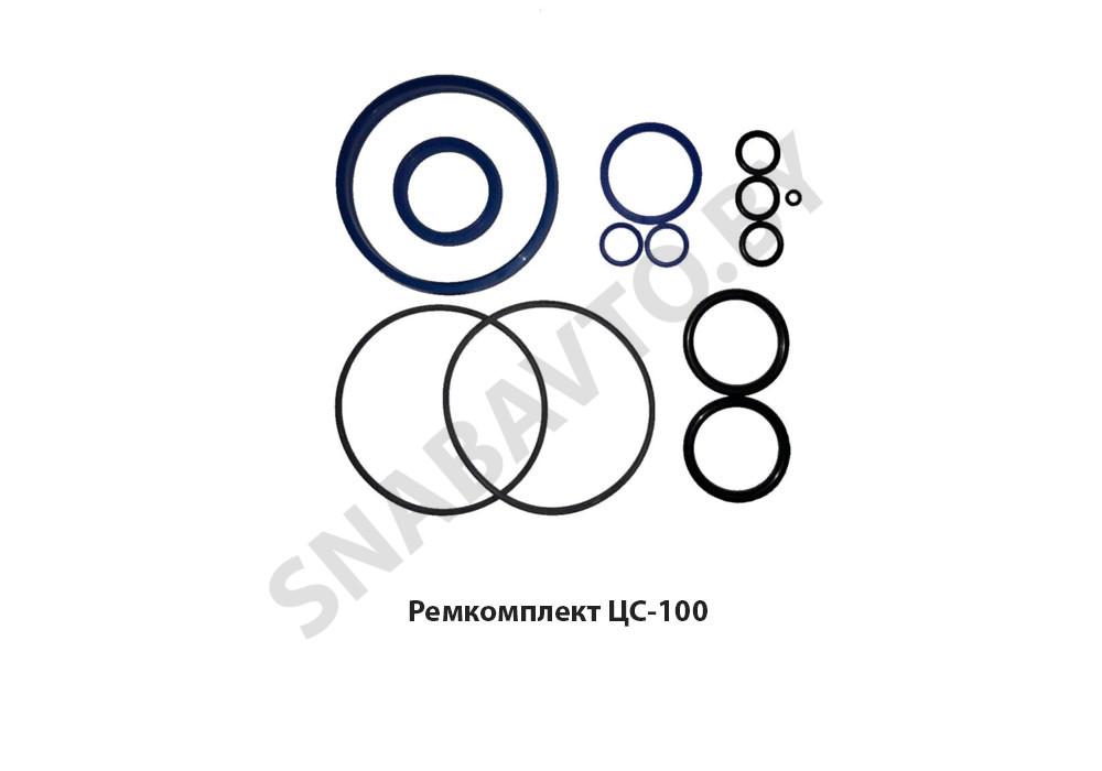 Ремкомплект ЦС-100