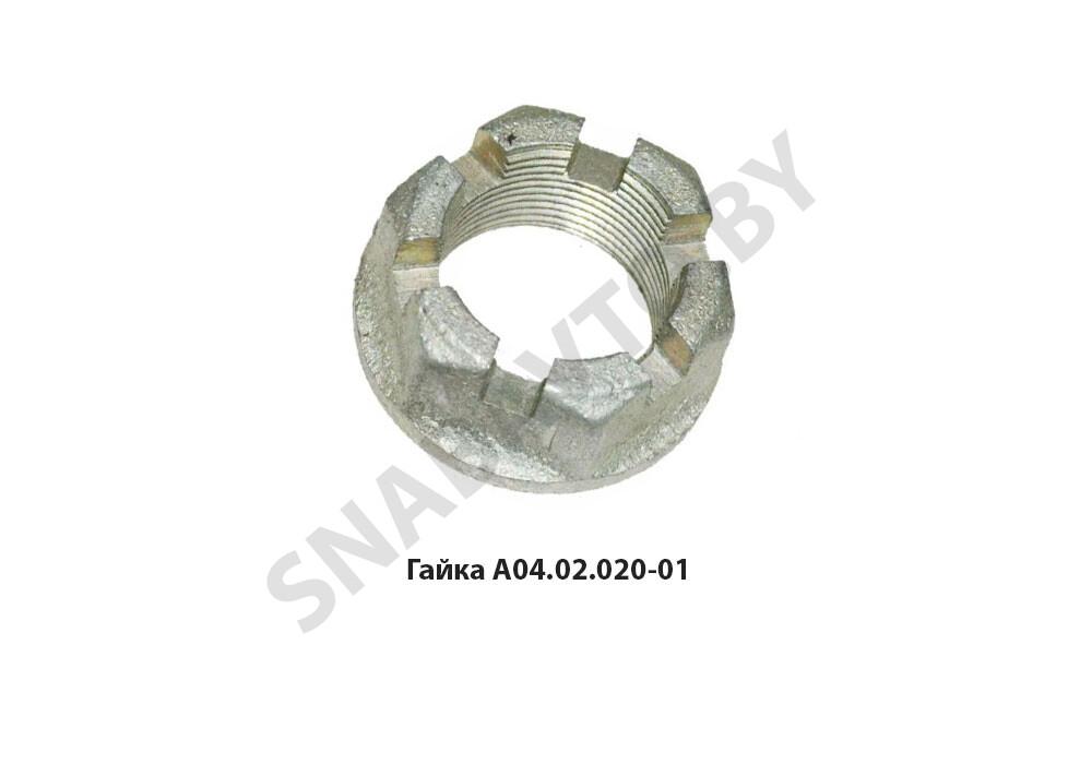 Гайка А04.02.020-01