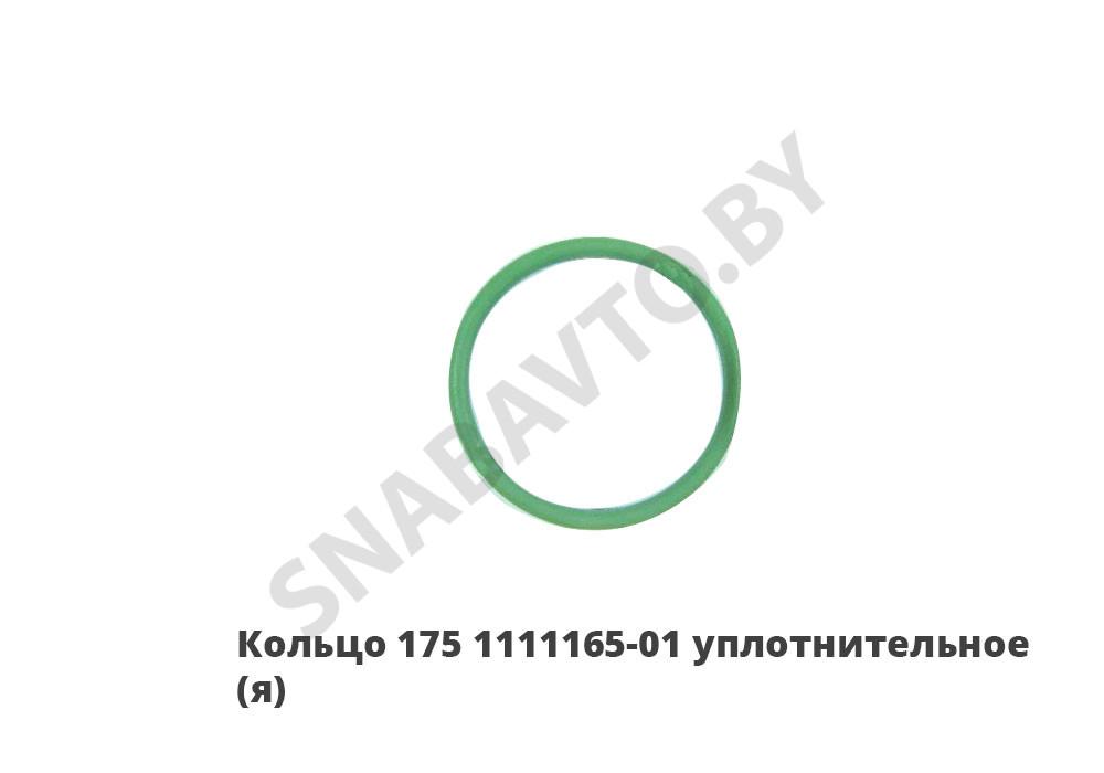 175.1111165-01