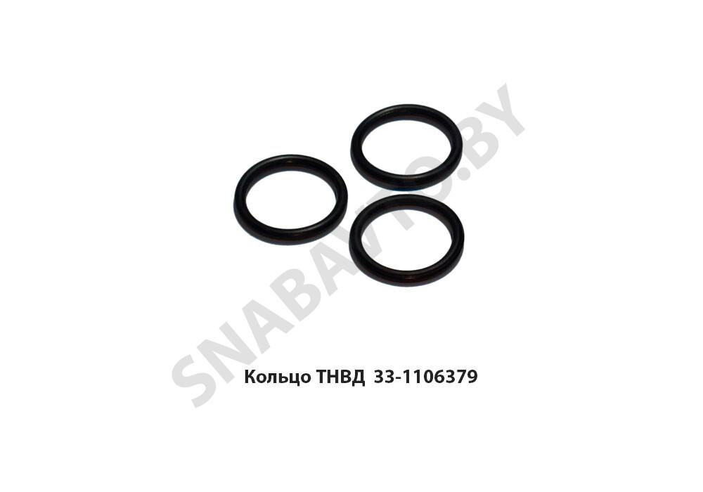 Кольцо ТНВД 016х020х25