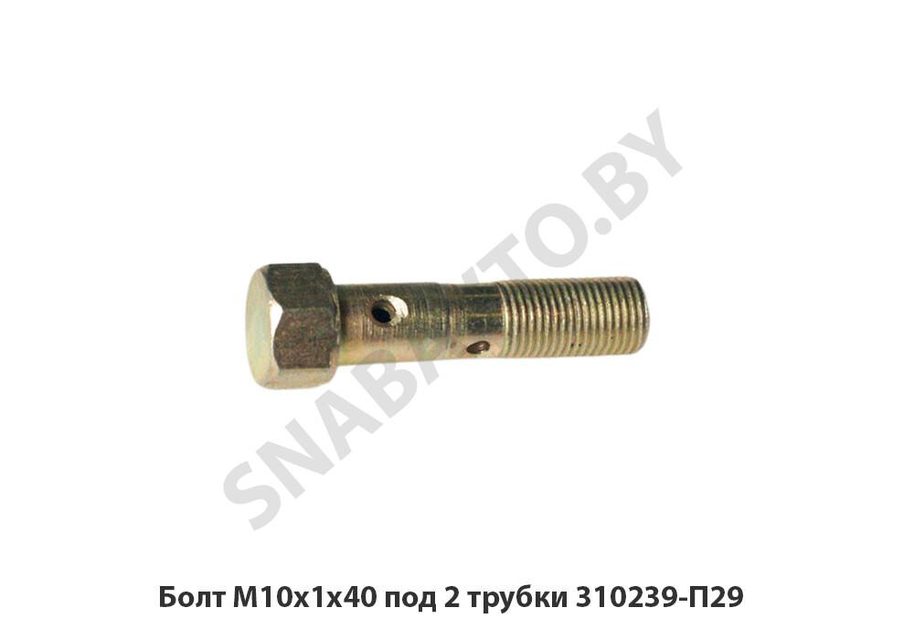 Болт М10х1х40 под 2 трубки