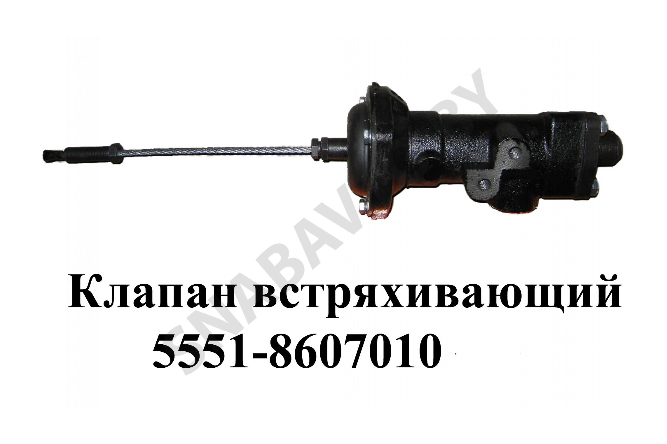 5551-8607010
