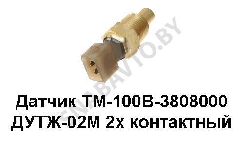 ТМ-100В-3808000