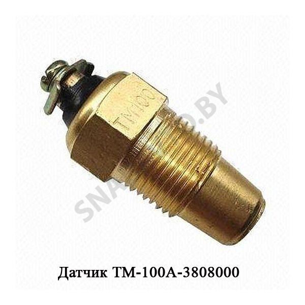 ТМ-100А-3808000