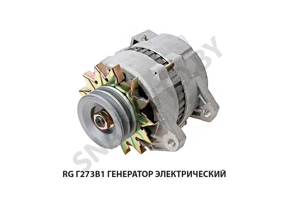 RG Г273В1