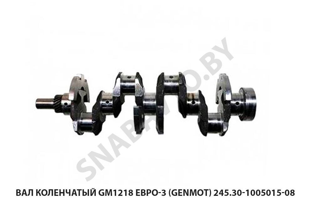 245.30-1005015-08 GM218